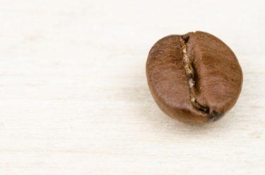 コーヒー豆のかすは最強の消臭剤。知っておいて損はないエコな再利用法とは?