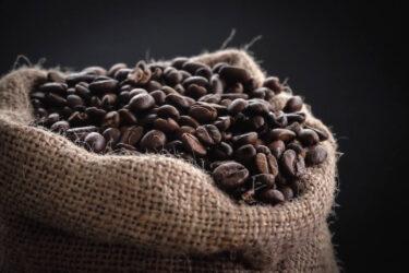 コーヒーの2050年問題とは?原因と対策を徹底解説【未来のために今できること】